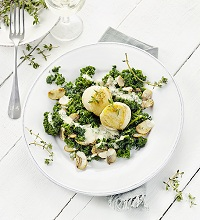 French scallops with kale