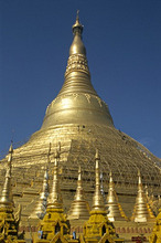 Workers on bamboo scaffolding applying fresh gold leaf to the Shwedagon Pagoda, Yangon (Rangoon), Myanmar (Burma), Asia