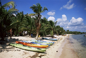 Beach with palm trees and kayaks, Punta Soliman, Mayan Riviera, Yucatan peninsula, Mexico, North America
