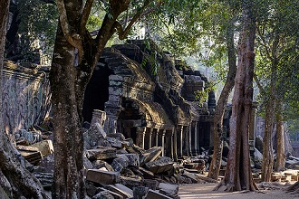 Ta Prohm temple, built in the 12th century by King Jayavarman VII, Angkor, UNESCO World Heritage Site, Siem Reap province, Cambodia, Indochina, Southeast Asia, Asia