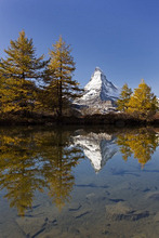Views of the Matterhorn and its reflection in Lake Grindji with larches in autumn, Zermatt, Valais, Switzerland