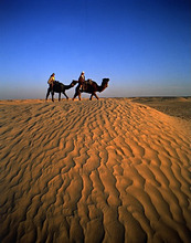 Tunisia, Sahara, tourist to ride aufKamelen *** Local Caption *** 01853109