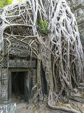 Ruins of Ta Prohm, Angkor Archaeological Park