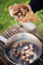 Hand holding roasted chestnuts in paper bag