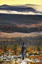 Europe, Finland, Lapland, Salla, a hiker looking out from the top of Ruuhitunturi Fell over fells and Taiga forest (MR)