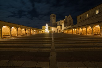 View of St. Francis Basilica view from the square at night with Christmas tree, Assisi, Umbria, Italy, Europe