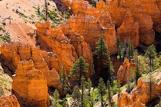 Bryce Canyon National Park. The major feature of the park is Bryce Canyon, which despite its name, is not a canyon, but a collection of giant natural amphitheaters along the eastern side of the Paunsaugunt Plateau, Utah, USA