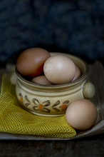 Chickens eggs,Lombardy,Italy,Europe