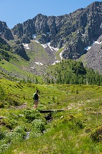 Hiker on his way to the Cimon di Bocche peack along the trial n.628 from the San Pellegrino pass, Trentino-Alto Adige, Italy