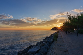 Sunset from Viale Miramare avenue, View of the Miramare Castle, Trieste, Friuli Venezia Giulia, Italy, Europe