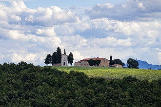 Cypress trees in the countryside, View of the Madonna di Vitaleta Chapel, Crete Senesi, Tuscany, Italy, Europe