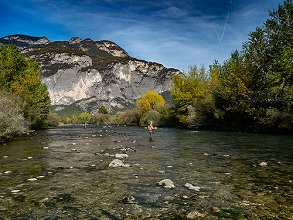 flyfishing in Noce river, Piana Rotaliana, Trentino, Italy, Europe