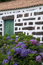 Typical house of Horta, Fajal, Azores Island, Portugal, Europe