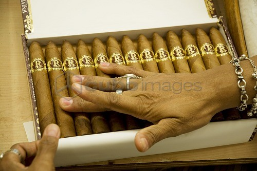 Cuba, Havana  Grading, sorting and packaging handmade cigars