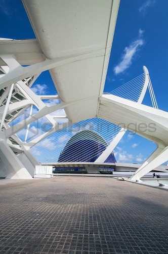 Príncipe Felipe Science Museum and Assut de l'Or Bridge, City of Arts and Sciences, Valencia, Spain