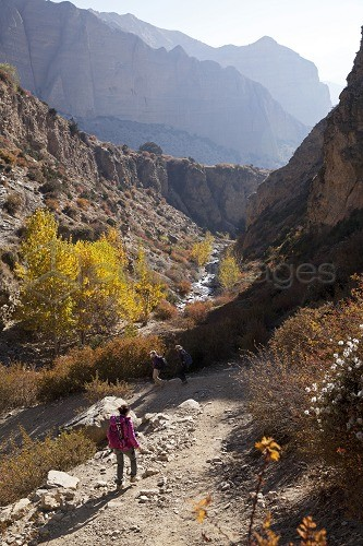 Nepal, Mustang. Trekkers en route between Samar and Giling.
