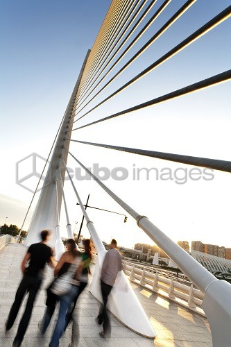 Puente de l'Assut de l'Or, bridge that connects the south side with Minorca Street in the City of Arts and Sciences, Cuidad de las Artes y las Ciencias, Santiago Calatrava (architect), Valencia, Spain