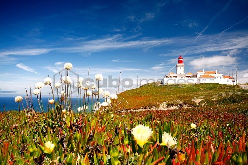 Cabo da Roca cape, Lisboa, Portugal, Europe