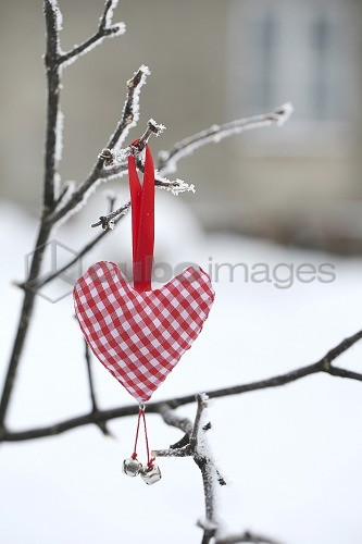 Heart on a branch with snow