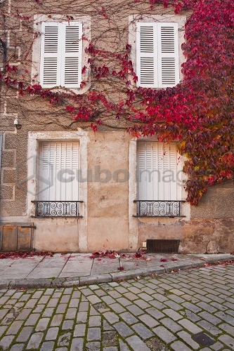 Autumn leaves in Noyers-sur-Serein, one the Beaux Villages de France, Yonne, Burgundy, France, Europe