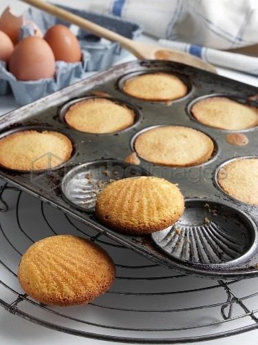 'Madeleines in Baking Pan; Cooling Rack'