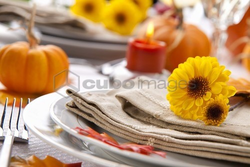 Autumnal Table Setting with Chrysanthemums and Pumpkins